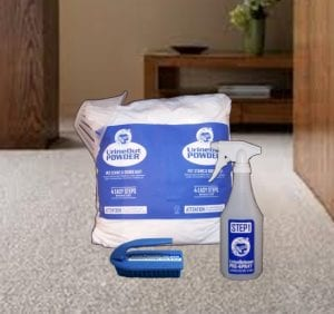 ALL SURFACE KIT – Pet Urine Remover System W/FREE BLACKLIGHT, Planet Urine