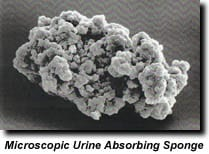 Enzyme Cleaners Don't Work, Planet Urine