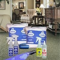 Helpful Tips to Get Rid of Pet Odors and Stains from a Carpet, Planet Urine