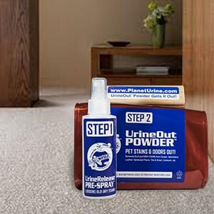 how to get dried dog poop out of carpet? - use UrineOut Powder!