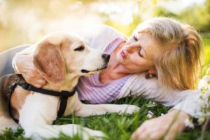dog with older woman
