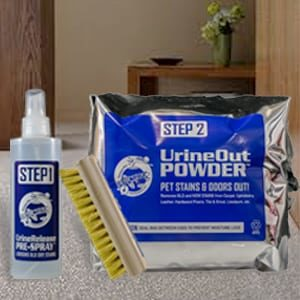 Get Human Urine Out of Carpet, Hardwood, Upholstery, Planet Urine